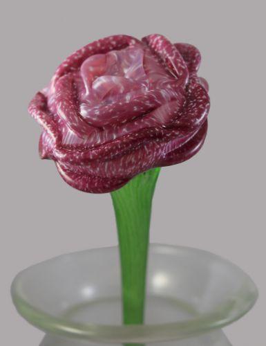 FC2025 - Fuchsia Rose