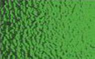 W1035-Dk.Green Ripple Trans.#343RIP