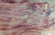 Y1067G-White Opal w/ Gold Purple/Pink Streaks Granite